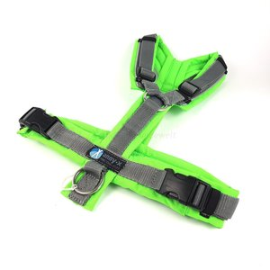 *Limited Edition* AnnyX hondentuigje PROTECT Grijs/Neongroen