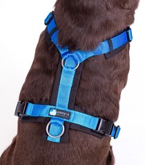 AnnyX Y-harnesses