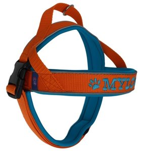 Neoprene dog harness with name 30mm