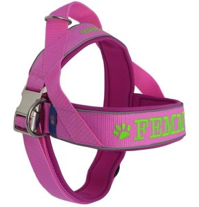 Neoprene dog harness with name 40mm