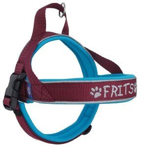 Neoprene dog harness with name 25mm